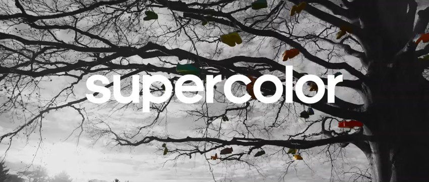 Supercolor Superstar : Adidas et Pharrell Williams (re)créent la tendance